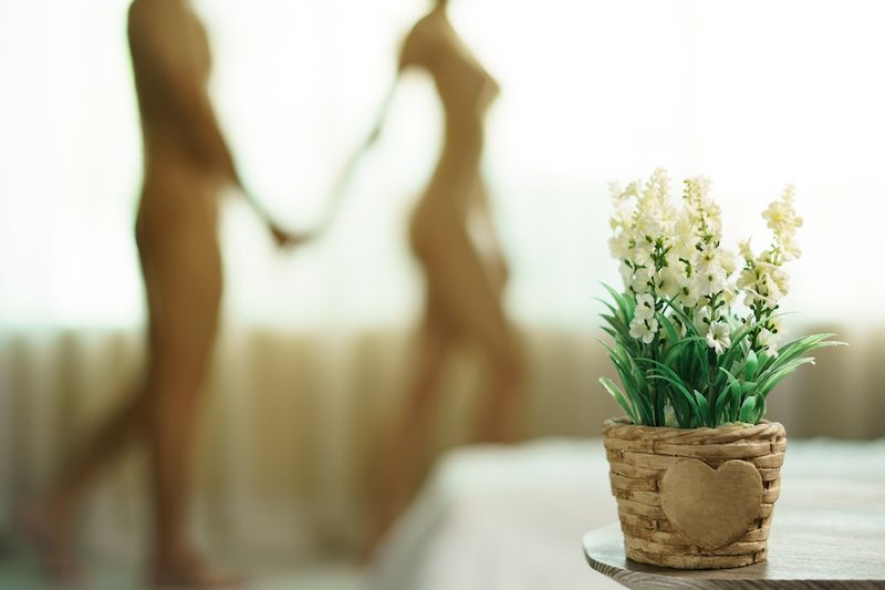 Blurry naked couple standing by window