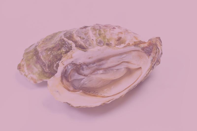 aphrodisiac oyster