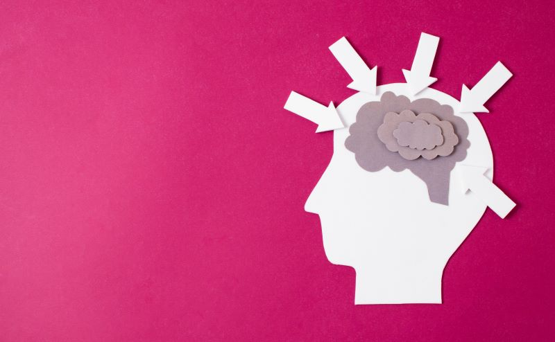 Paper cut out brain on pink background with arrows pointing in